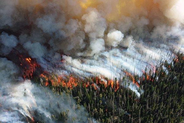 incendi clima emergenza