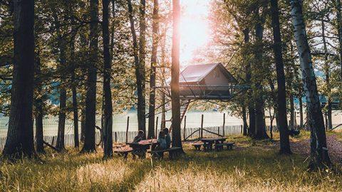 outstanding tenda safari